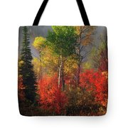 Color And Light Tote Bag by Leland D Howard