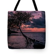 Cool Autumn Evening Tote Bag