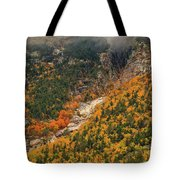Crawford Notch Fall Foliage Tote Bag