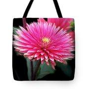 Hot Pink Dahlia  Tote Bag
