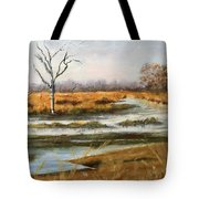 Early Spring On The Marsh Tote Bag