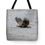 Fly Over Tote Bag by Dan Friend