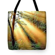 1 Forest Rays Tote Bag