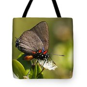 Great Purple Hairstreak Tote Bag