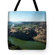 Green Snake River Tote Bag