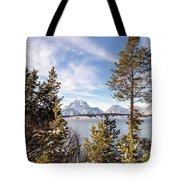 Jackson Lake Overlook Tote Bag by Michael Chatt