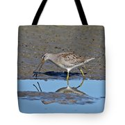 Long-billed Dowitcher Tote Bag