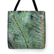 Moist Pine Tree Leaves With Water Droplets. Tote Bag