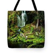 Mossy Falls Tote Bag