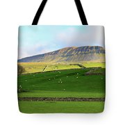 Penyghent In Yorkshire Dales National Park North Yorkshire Tote Bag