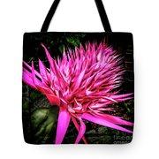 Pink Princess Bromeliad Tote Bag