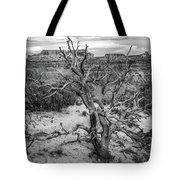 Pinyon Pine Tote Bag