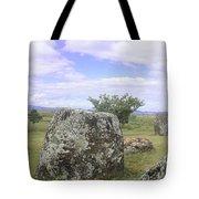 Plain Of Jars Tote Bag