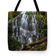Ramona Falls Tote Bag
