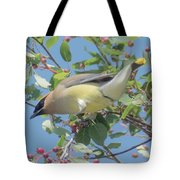 Ready For Take Off Tote Bag by Sally Sperry