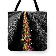 Rows Of Tulips Tote Bag