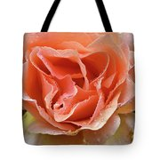 Salmon Pink Rose Tote Bag