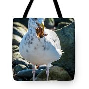Seagull With Sail Tote Bag