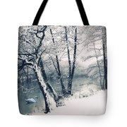 Snow Pond Tote Bag