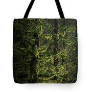 Stunning Fine Art Landscape Image Of Winter Forest Landscape In  Tote Bag