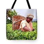 Tea Picker In Kenya Tote Bag