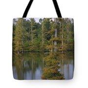 Tennesse Cypress In Wetland  Tote Bag