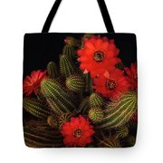 The Beauty Of Red  Tote Bag