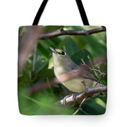 Thick-billed Vireo Tote Bag by Thomas Kallmeyer