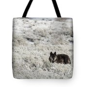 W18 Tote Bag by Joshua Able's Wildlife