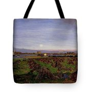 Walton-on-the-naze Tote Bag