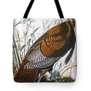 Wild Turkey  Male  Tote Bag