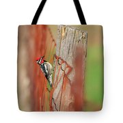 Yellow-bellied Sapsucker 2 Tote Bag