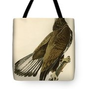 White Headed Eagle  Tote Bag