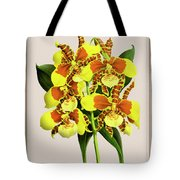 Orchid Vintage Print On Tinted Paperboard Tote Bag
