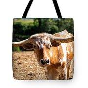 Longhorn Bull In The Paddock Tote Bag