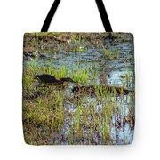 Green Heron Looking For Food Tote Bag