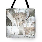Beautiful Image Of Fallow Deer In Snow Winter Landscape In Heavy Tote Bag