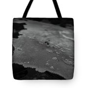 Ice Layer On The Seafloor Tote Bag