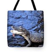 Little Gator Tote Bag