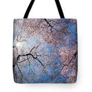 Low Angle View Of Cherry Blossom Trees Tote Bag