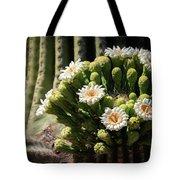 Saguaro Blossoms  Tote Bag