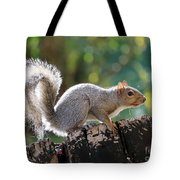 Squirrel Friend Tote Bag