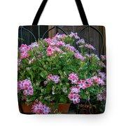 Variegated Tote Bag