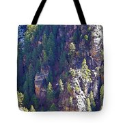 2014 Valentine Mountain Trip Tote Bag
