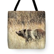 Grizzly Bear Tote Bag by Michael Chatt