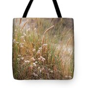 Late Evening Sunset Summer Rays Of Sun Light Up Sand Dunes And G Tote Bag