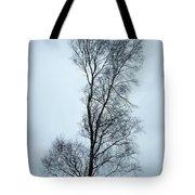 Moody Winter Landscape Image Of Skeletal Trees In Peak District  Tote Bag