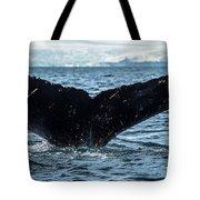 Whale In The Ocean, Southern Ocean Tote Bag