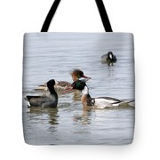 Red-breasted Merganser Tote Bag