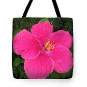Bright Pink Hibiscus Tote Bag